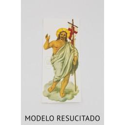 Cirio pascual de cera (10 x 80cm).